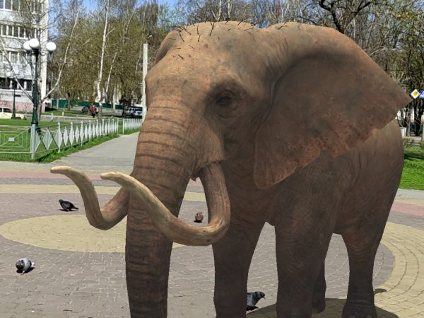 Мир AR-животных в приложении WOWclub